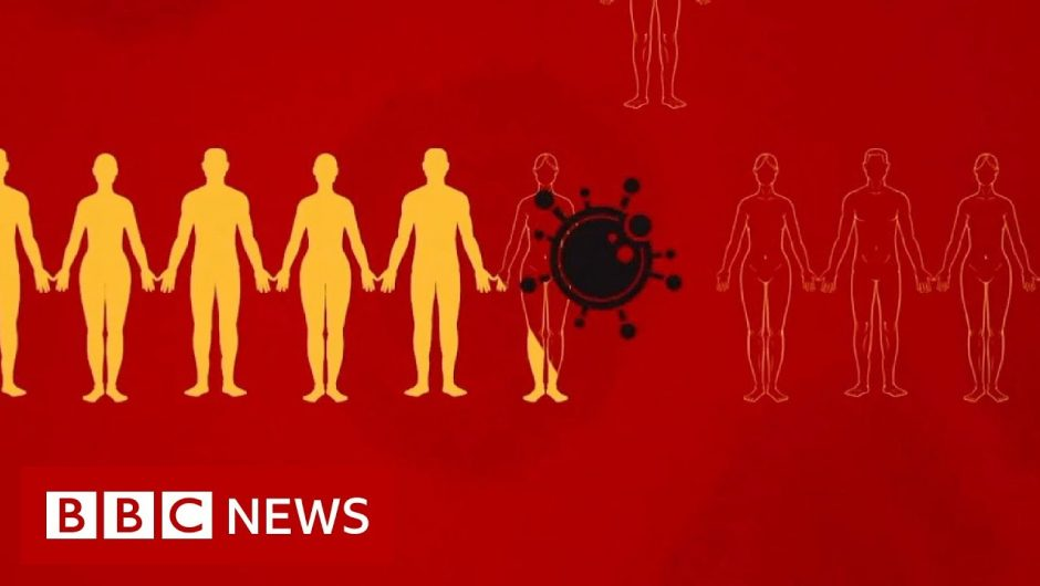 Coronavirus: What is social distancing? – BBC News