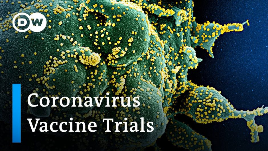 Coronavirus Update: Global race to develop a vaccine enters next stage   DW News