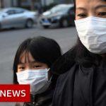 World battles coronavirus outbreak – BBC News