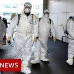 Coronavirus: South Korea has seen its confirmed cases spike – BBC News