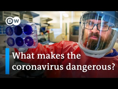 Coronavirus research: When can a vaccine be expected? | DW News