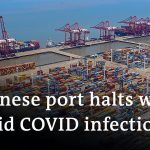 Port closures in China hamper global supply chains   DW Business