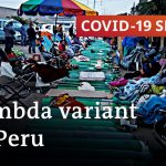 Lambda variant pushes up death toll in Peru   COVID-19 Special