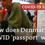 Is Denmark's coronavirus 'passport' a prototype for European travel?   COVID-19 Special
