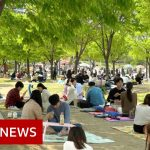 Coronavirus: How South Korea 'crushed' the curve – BBC News