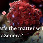 Germany temporarily halts AstraZeneca vaccinations | Coronavirus latest