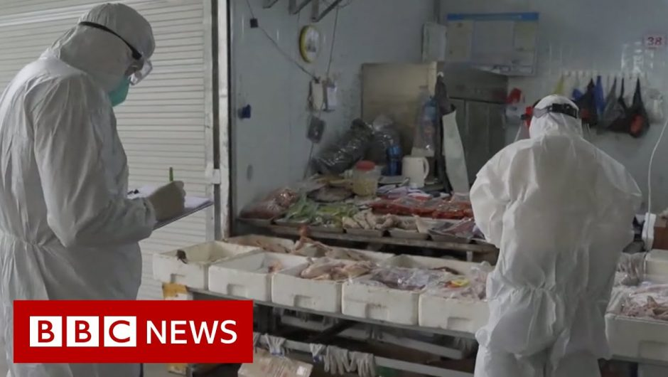 Why the China Covid lab-leak theory is being taken seriously – BBC News