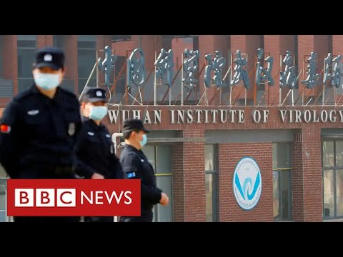 President Biden orders review of claims Covid came from Chinese lab – BBC News
