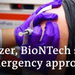 Pfizer, BioNTech seek emergency approval for coronavirus vaccine   DW News